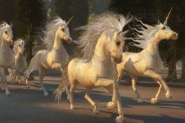 profitless_growth_tech_unicorns